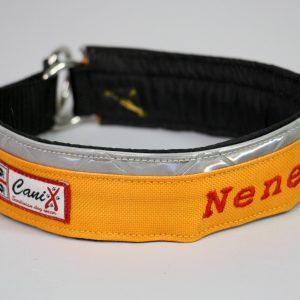 01-Collare-Personalizzato-Canix (1)