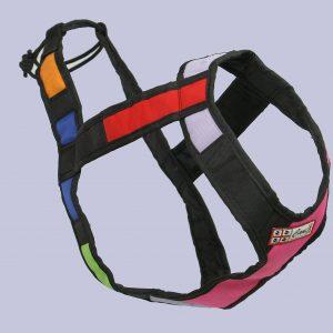 02-Imbrago-Dog-Endurance-Canix